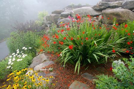 Классические цветы альпийской горки